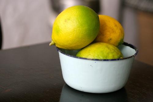 IMG_0031レモン