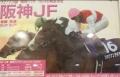 2015阪神JFポス