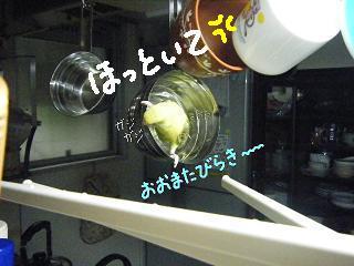 cupoomata-4.jpg