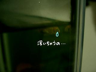 jyakouki-2.jpg