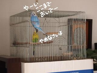 kinkyo-7-2.jpg