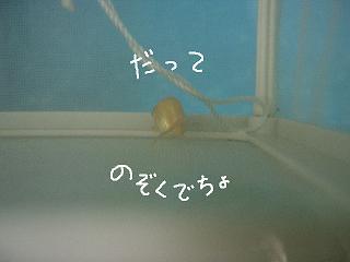 nozoku2.jpg
