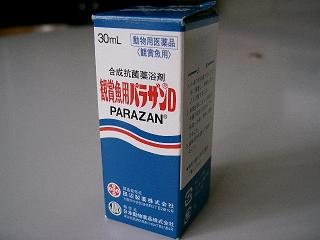 parazan2.jpg
