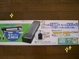 sinjyoubu-2.jpg