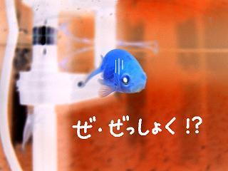zesshoku-2.jpg