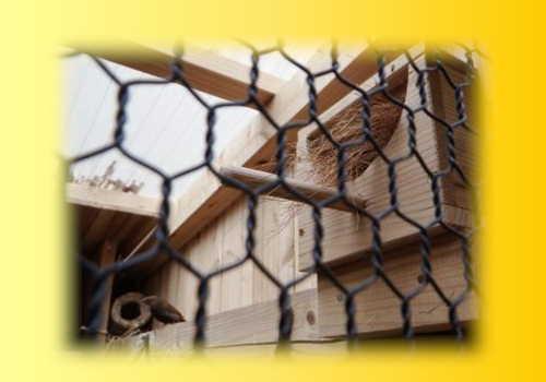 コマチ巣箱