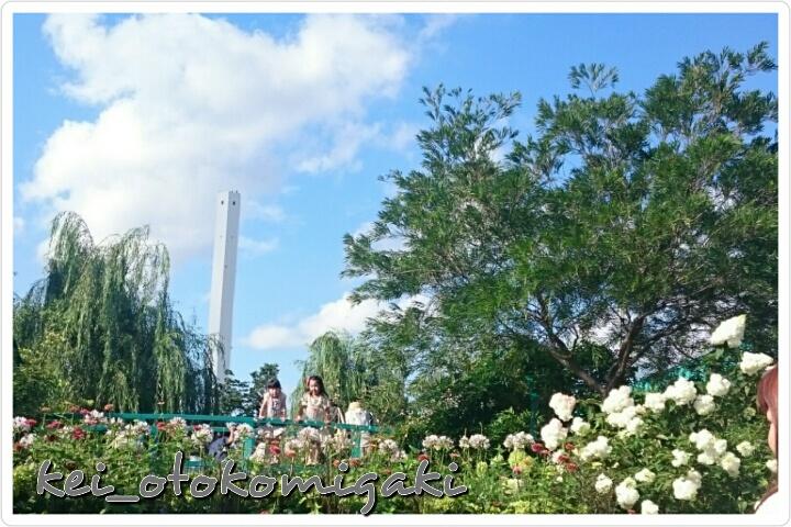 空中庭園1