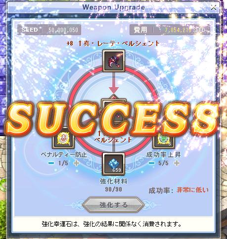 新武器強化システム+9 (2)