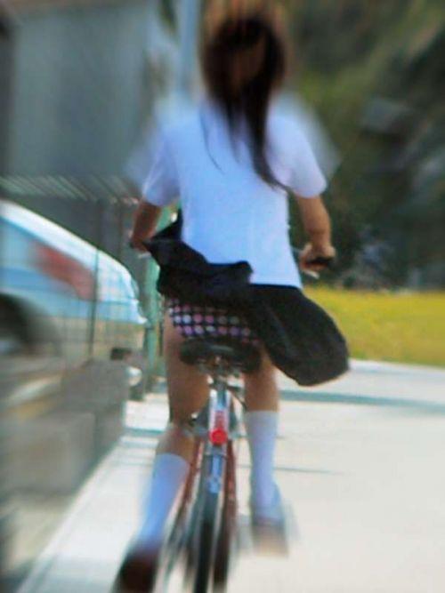 【盗撮画像】ミニスカJKが自転車通学すると当然パンチラしまくるよな 41枚 part.2 No.3