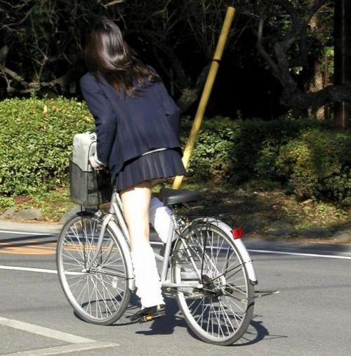 JKの自転車パンチラ盗撮画像集めたから貼っていくわ! 42枚 part.2 No.8