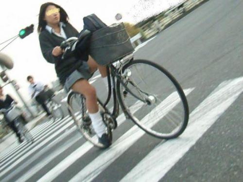 JKの自転車パンチラ盗撮画像集めたから貼っていくわ! 42枚 part.2 No.15