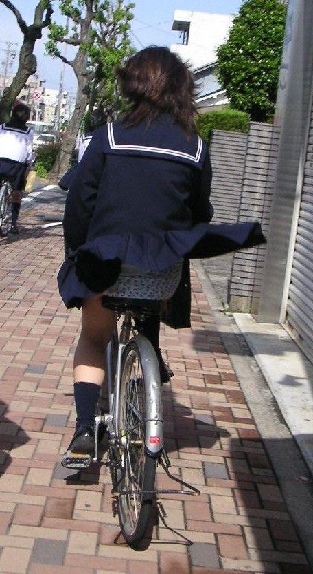 JKの自転車パンチラ盗撮画像集めたから貼っていくわ! 42枚 part.2 No.24
