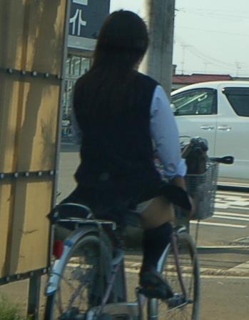 JKの自転車パンチラ盗撮画像集めたから貼っていくわ! 42枚 part.2 No.31