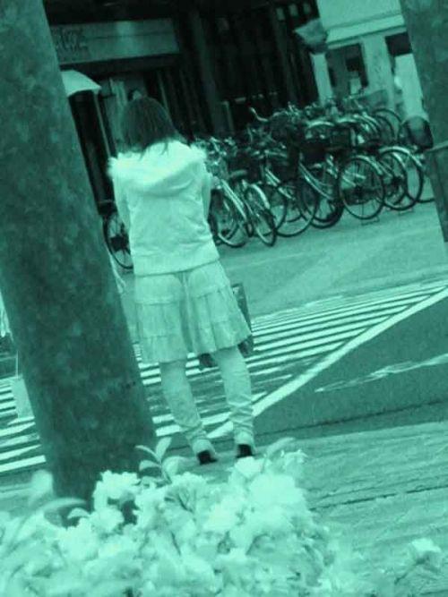 【盗撮画像】赤外線カメラで素人パンティを街撮りした結果www 33枚 No.13