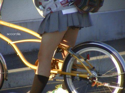 【盗撮画像】ミニスカJKが自転車乗って太ももやパンチラ見せてくる件! 38枚 part.2 No.7