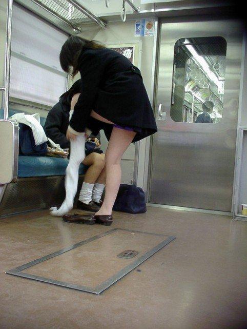 【盗撮画像】電車でパンチラしてるJKの股間と日焼けした太ももエロ過ぎwww No.5