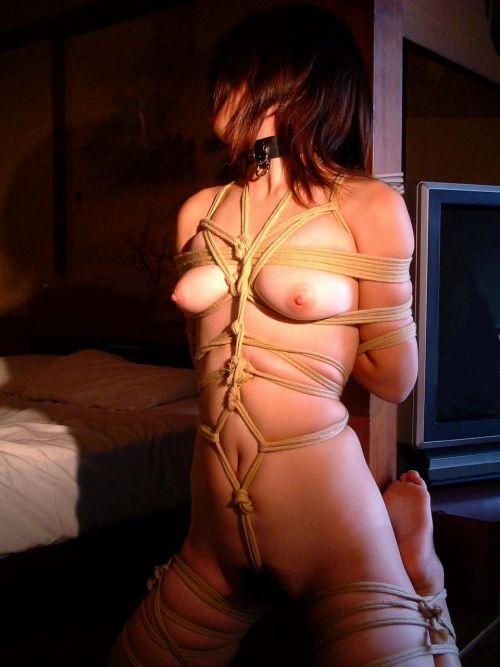 【画像】SMプレイの縄で縛られるおっぱいやお尻がエロ過ぎwww No.5