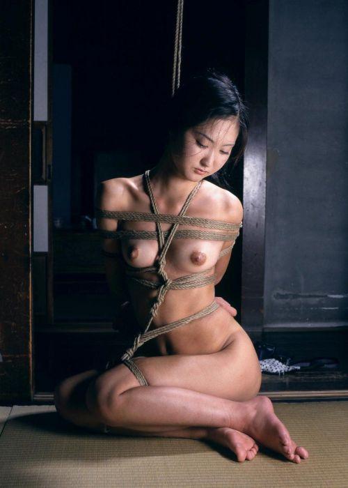 【画像】SMプレイの縄で縛られるおっぱいやお尻がエロ過ぎwww No.28