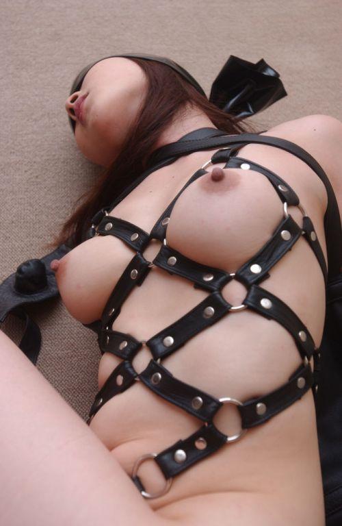 【画像】SMプレイの縄で縛られるおっぱいやお尻がエロ過ぎwww No.33
