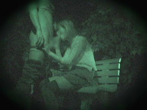 【エロ画像】野外セックス中のカップルを赤外線カメラで盗撮した結果www 33枚 No.2