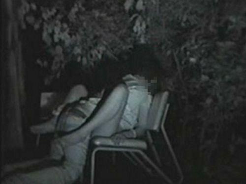 【エロ画像】野外セックス中のカップルを赤外線カメラで盗撮した結果www 33枚 No.11