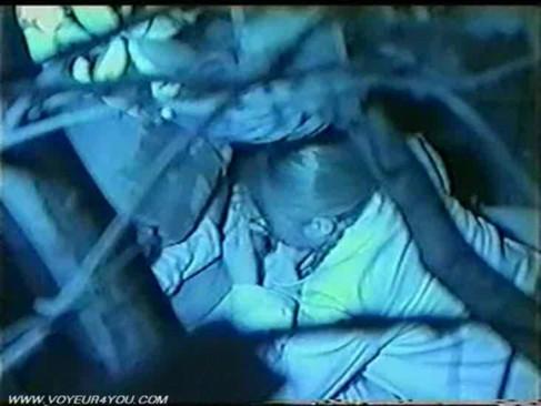 【エロ画像】野外セックス中のカップルを赤外線カメラで盗撮した結果www 33枚 No.14