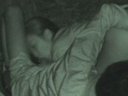 【エロ画像】野外セックス中のカップルを赤外線カメラで盗撮した結果www 33枚 No.16