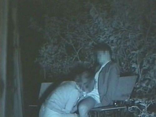 【エロ画像】野外セックス中のカップルを赤外線カメラで盗撮した結果www 33枚 No.20