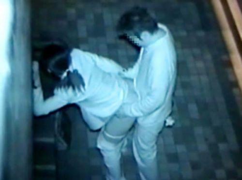 【画像】カップルの野外後背位セックスを赤外線カメラで盗撮したったwww 33枚 No.6