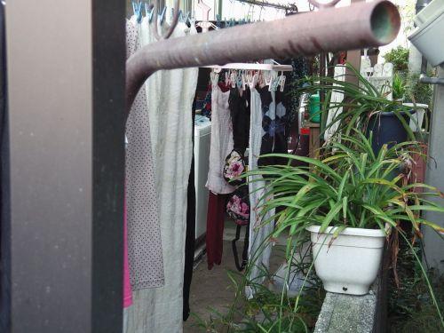 下着泥棒の大好物!パンティやブラジャーを外干しした洗濯物盗撮エロ画像 36枚 No.6