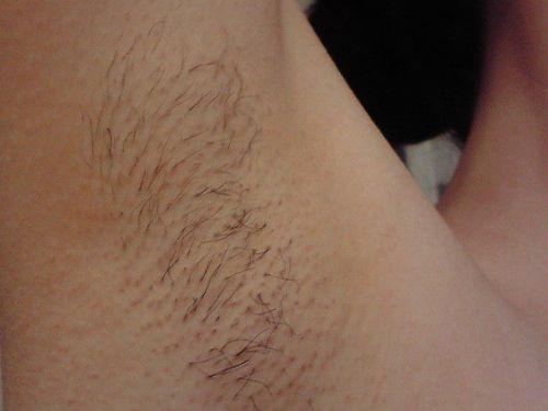 【腋フェチ】スリスリしたら痛そうでジョリジョリなワキ毛ドアップのエロ画像 33枚 No.23