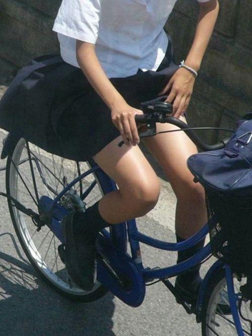 【画像】自転車通学中に強風でパンモロしちゃうミニスカJK達www 35枚 No.16