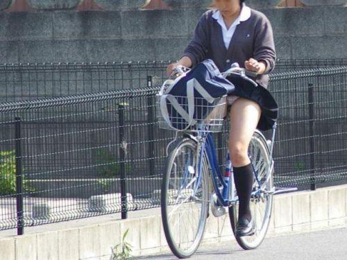 【画像】自転車通学中に強風でパンモロしちゃうミニスカJK達www 35枚 No.22