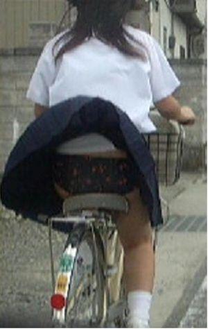 【画像】自転車通学中に強風でパンモロしちゃうミニスカJK達www 35枚 No.30