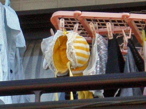 女性宅のベランダに干されたブラジャーやパンティを盗撮したエロ画像 32枚 No.25