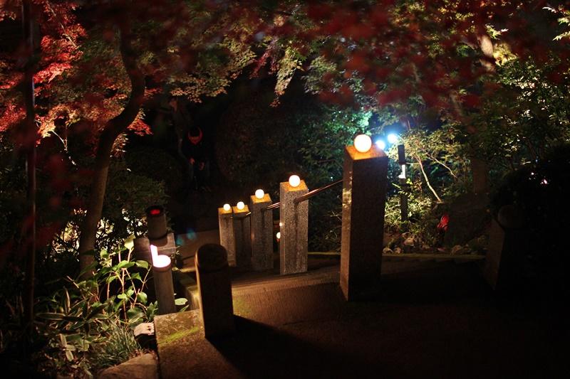 2015-11-23 nobunobuno (32)
