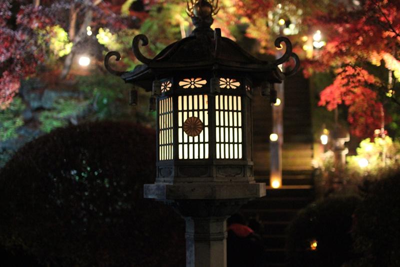 2015-11-23 nobunobuno (48)
