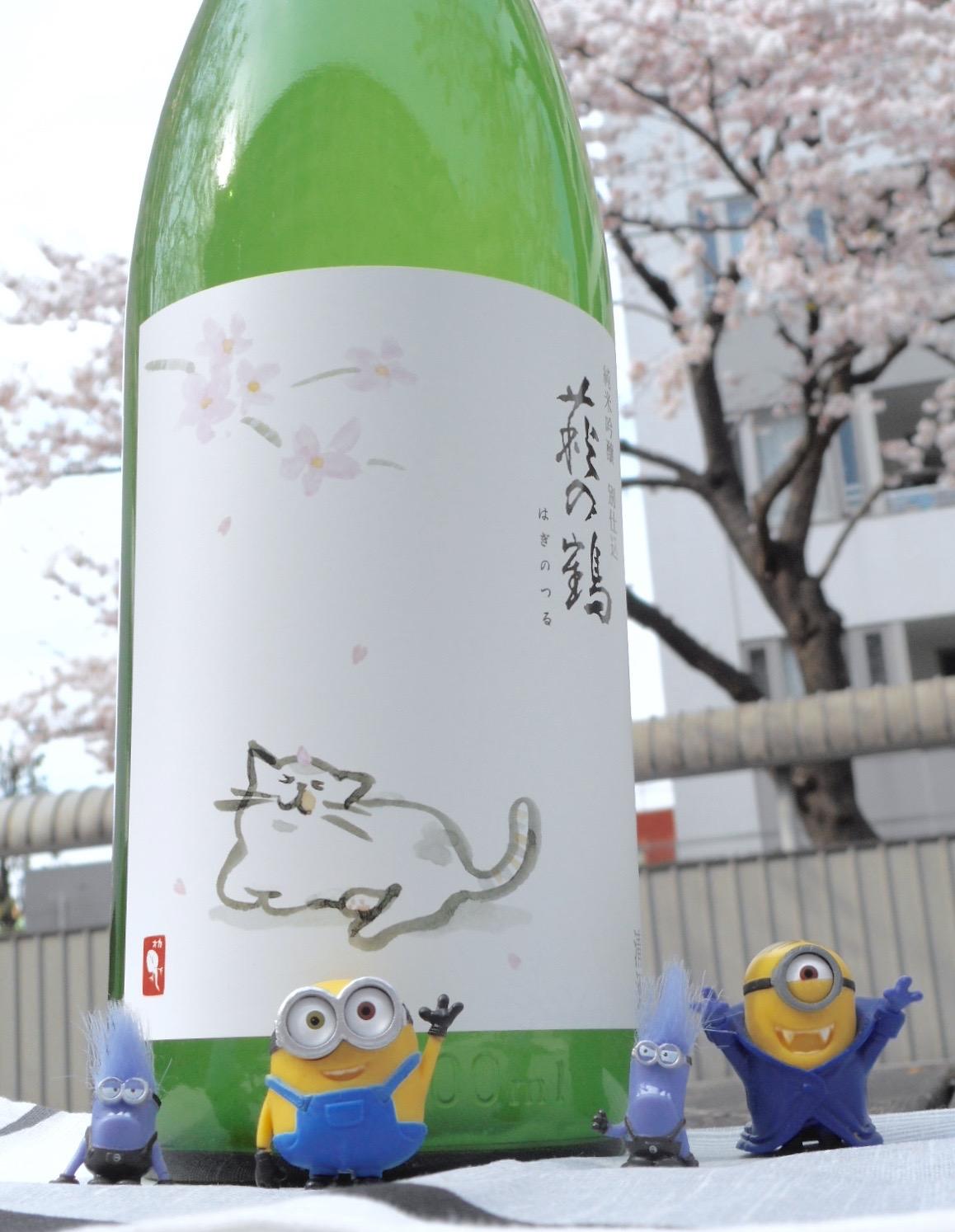 haginoturu_neko_sakura1.jpg