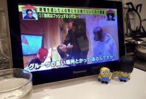machidashuzou_jikazui_miyama5.jpg