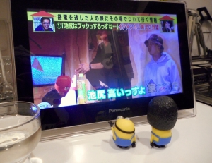 machidashuzou_jikazui_miyama6.jpg