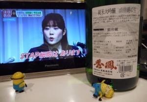 shuhou_jundai_yamada3.jpg
