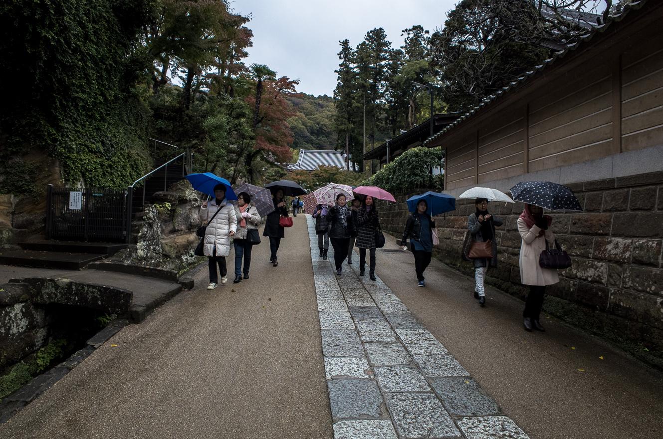 151126鎌倉 (2 - 1)-10