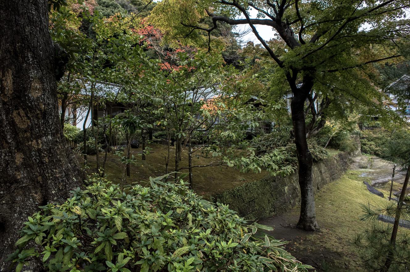 151126鎌倉 (2 - 1)-20
