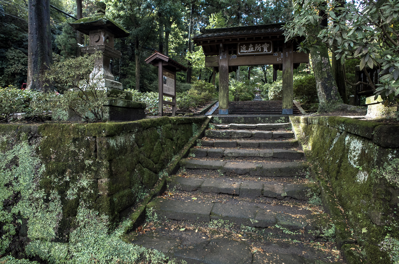 151126浄智寺 (2 - 1)