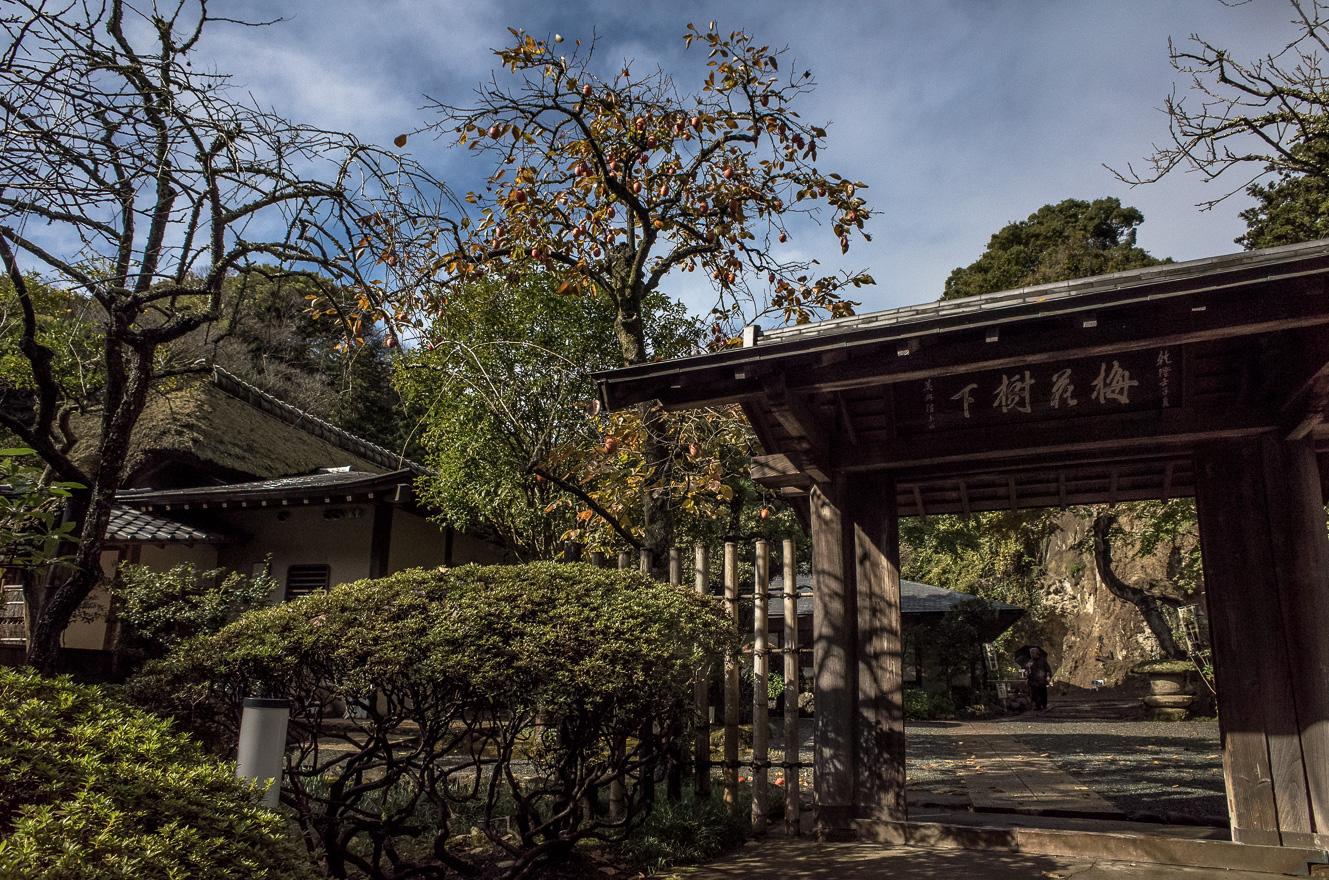 151126浄智寺 (2 - 1)-3