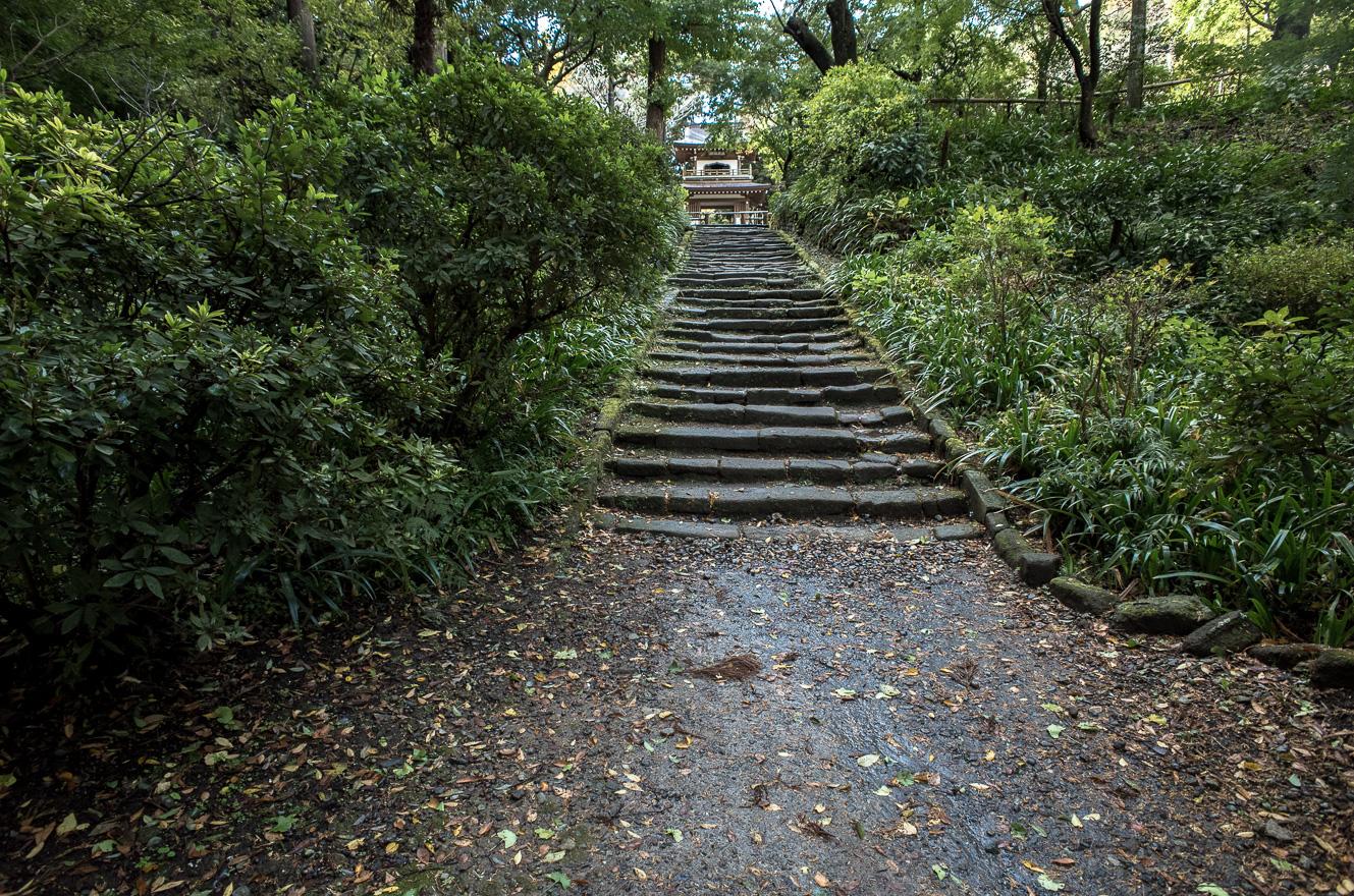 151126浄智寺 (2 - 1)-2