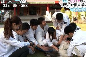 ZIP! 生放送で爆乳少林寺生徒の乳を全国に晒すwww