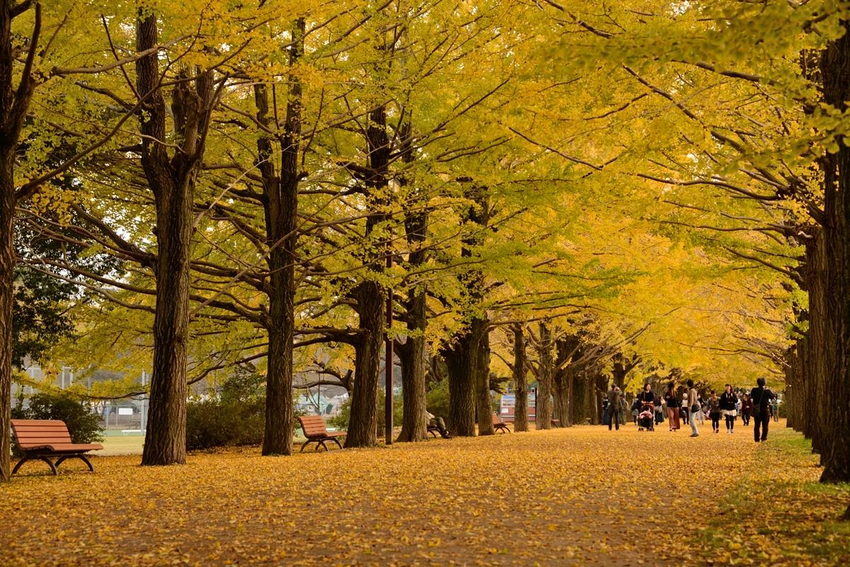 昭和記念公園__05