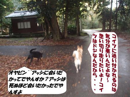 PC080216_convert_20151210103919.jpg