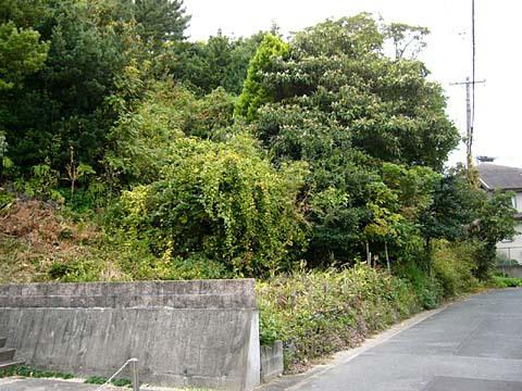 富塚丸山1